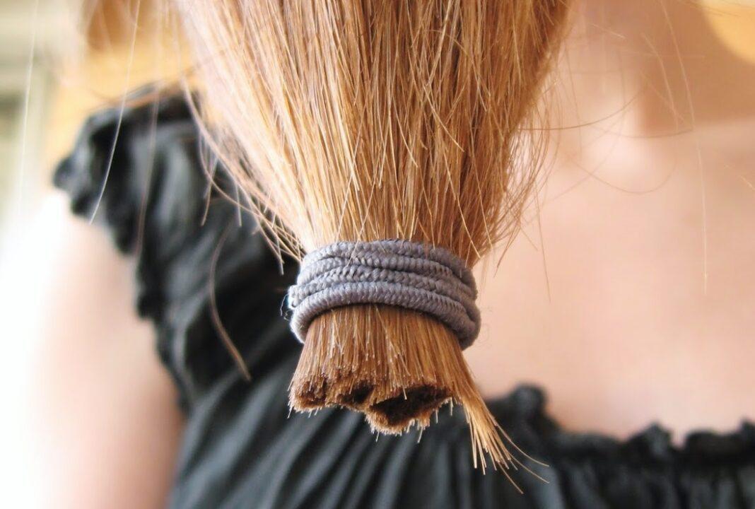 Cheveux coupés